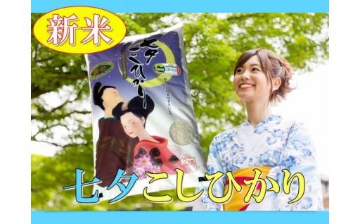 8月上旬より順次発送!新米『七夕こしひかり』