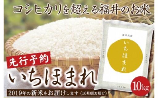 【先行予約開始】令和元年産 福井県産いちほまれ 10kg