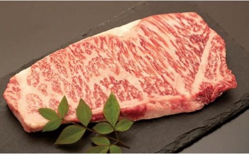 【肉質等級5等級】サーロインステーキ200g×5枚セット