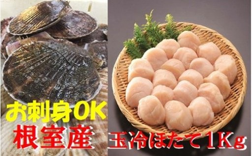 【北海道根室産】玉冷ほたて1kg