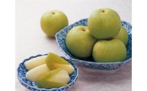 夏バテ解消に!さっぱりとした甘みと酸味の二十世紀梨を!