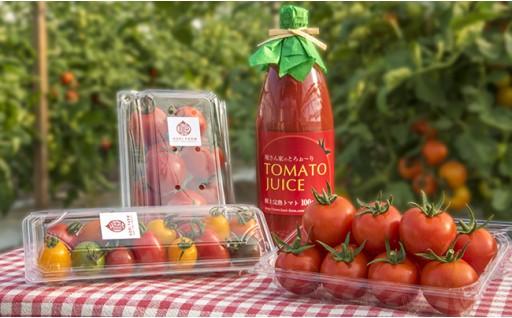 【NEW】返礼品に「堀さんちのこだわりトマトセット」が追加!