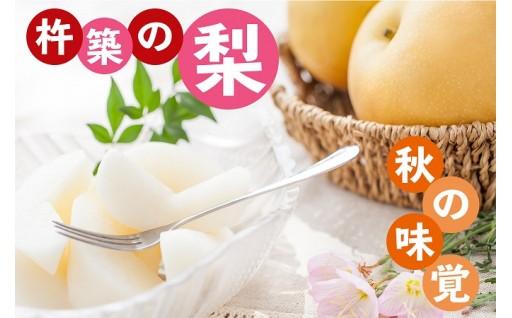秋の味覚!杵築(きつき)の梨~旬を味わおう!~