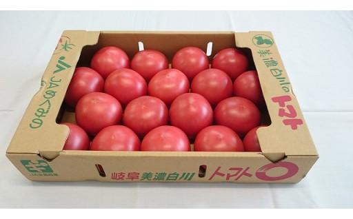 美濃白川のトマトの受付を行っています!