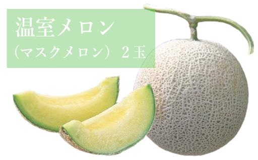 【先行受付まもなく終了! / 2019年産】温室メロン2玉