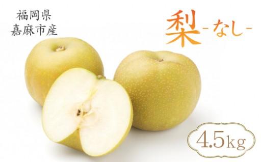 【先行予約】その時期に採れる旬の梨!!