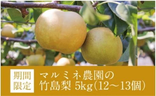 【秋の味覚】期間限定!四万十市で人気の竹島梨です♪