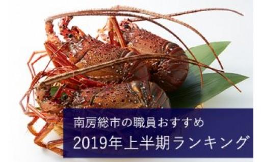 【南房総市】2019年上半期おすすめ!お礼の品ランキング
