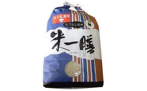 【新米 令和元年産】減農薬 コシヒカリ 精米 5kg