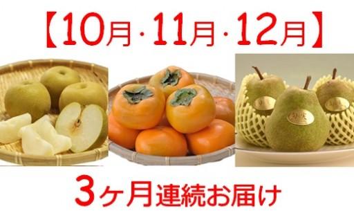 《10・11・12月》季節のくだもの3ヶ月定期便
