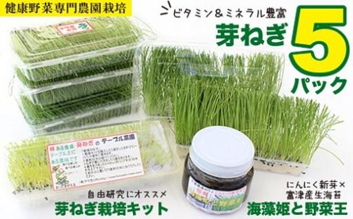 【農薬未使用・無添加】特選芽ねぎセット
