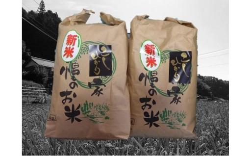 《1万円寄附》10キロ 新米コシヒカリ(八百津町産)