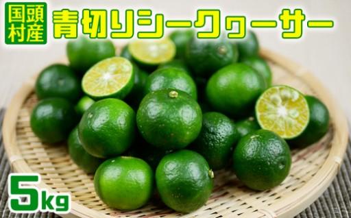 【国頭村産】青切りシークヮーサー(5kg)