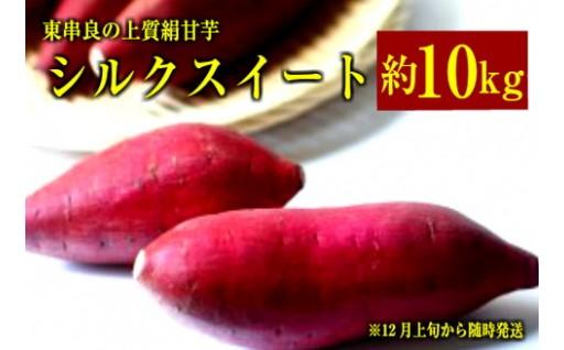 大切に育てられた東串良町産さつま芋シルクスイート!