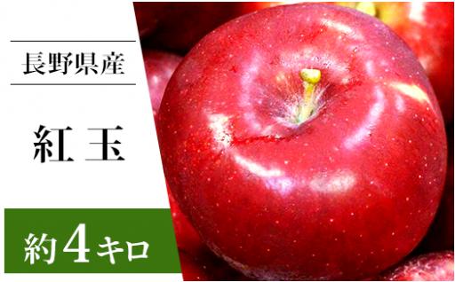 【これから美味しくなってきます♪】長野県産りんご「紅玉」