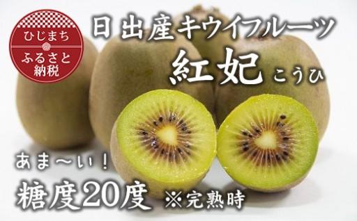 高糖度!キウイフルーツ(紅妃)【20~25玉】