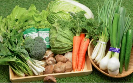 【1日限定5セット】新鮮野菜をお届けします♪