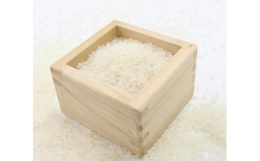 お米どころ、秋田の新米!