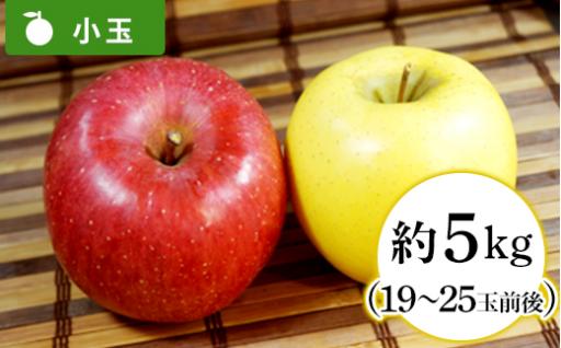 【小玉だから食べやすい】王林 & サンふじ 食べ比べセット