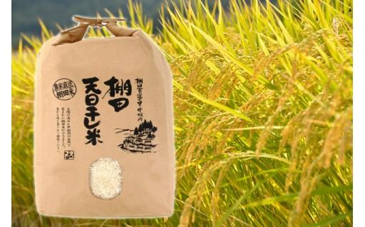 益田産の新米コシヒカリをお届けします!!