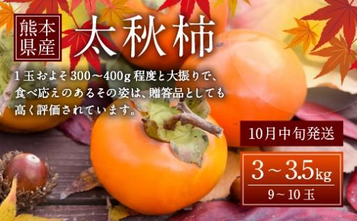 【10月発送】熊本県産 太秋柿 3~3.5kg 柿 カキ