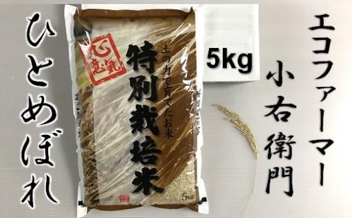 エコファーマー小右衛門のひとめぼれ(化学肥料不使用)
