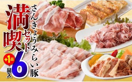 【発送時期をメールでお知らせ】小分けの豚肉セット