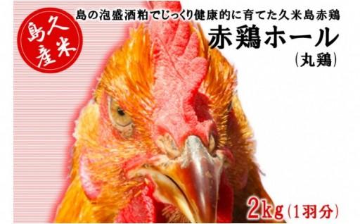泡盛酒粕で育てた 久米島赤鶏ホール(丸鶏) 2kg(1羽分)