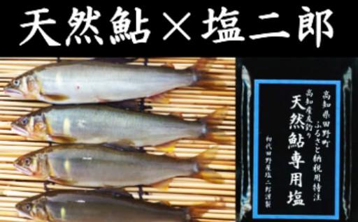 天然鮎8匹(20cm前後)✖塩二郎の完全天日塩