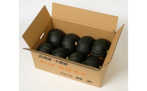 【秋限定!】北海道産!ほっくり甘い完熟かぼちゃ10kg