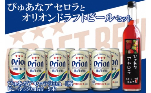 アセロラ500ml瓶×ドラフトビール350ml缶9本セット