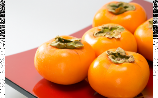 【受付終了間近です】橙色に艶めく「庄内柿」