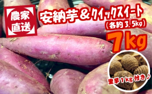 農家直送の贈り物安納芋&クイックスイート7kg(里芋付き)