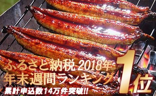 【秋の豊作祭】四万十うなぎ蒲焼き(超々特大)2本セット
