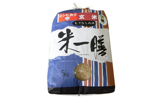 【新米 令和元年産】減農薬 コシヒカリ 玄米 5kg