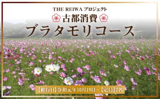 【古都消費】ブラタモリコース(令和元年10月19日実施)