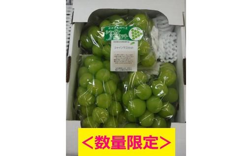 【大好評!】シャインマスカット(1箱・2kg入り)