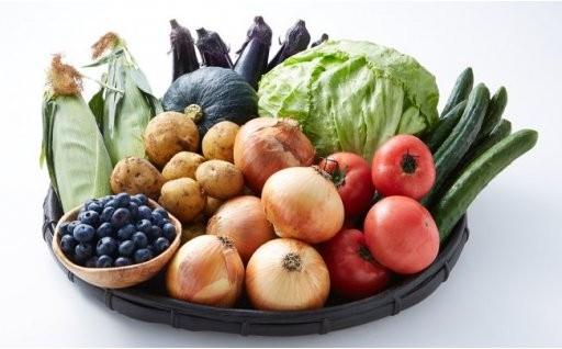 旬の美味しい♪野菜【美里町産野菜の詰め合わせ】