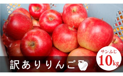 《締切間近!》2019年産 訳ありふぞろいりんご