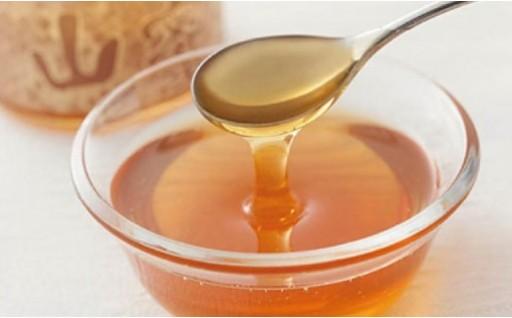 希少な天然蜂蜜!便利な蜂蜜チューブ(250g)の2本セット!