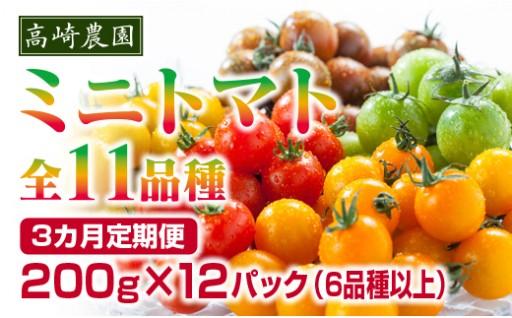 色とりどり11品種ミニトマト200g×12パック詰め合わせ