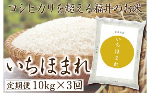 752  令和元年産 福井県産いちほまれ 定期便 計30㎏