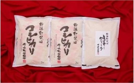 【令和元年産】特別栽培米コシヒカリとミルキークイーンのセット