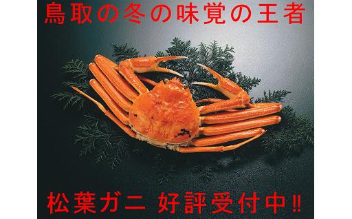 ボイルでお届け、鳥取の冬の味覚の王者「松葉ガニ(大)」