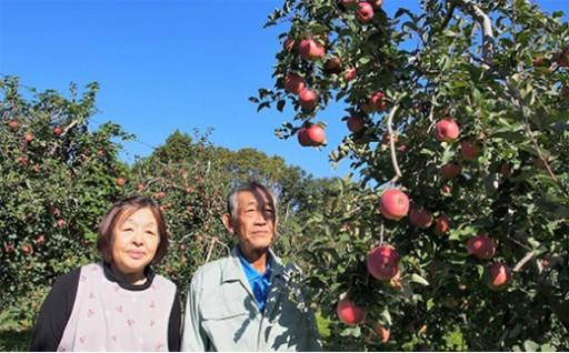 【特選贈答用】南信州産りんご「シナノスイート」(10kg)