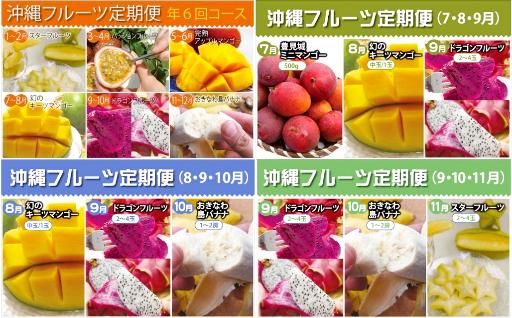 自慢のマンゴーや沖縄フルーツをお届けします♪