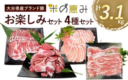 大分県産 ブランド豚 「米の恵み」お楽しみセット