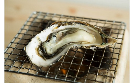 冬の味覚「殻付き牡蠣」はいかがですか?