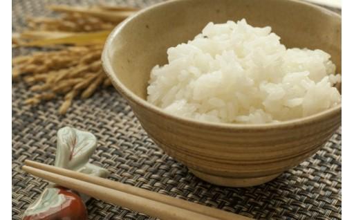 《4種類のお米を4ヵ月間お届け!》令和元年産米セット
