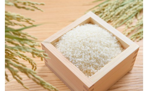 令和元年産ひのひかり玄米30kg